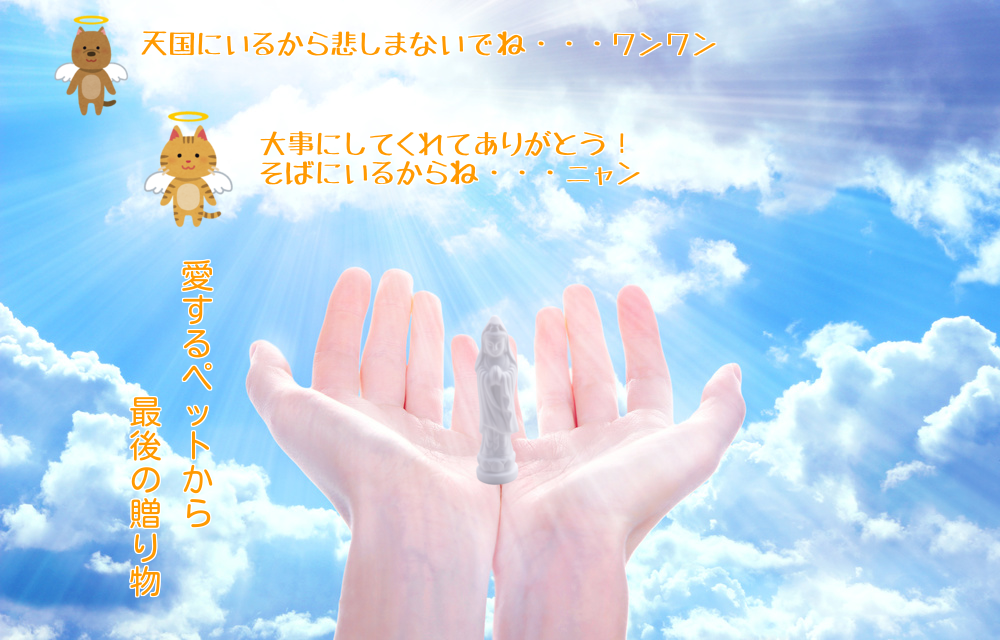 pet_angel